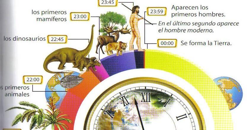 Tajuela Si La Historia De La Tierra Fueran 24 Horas El Hombre Aparece En El último Minuto