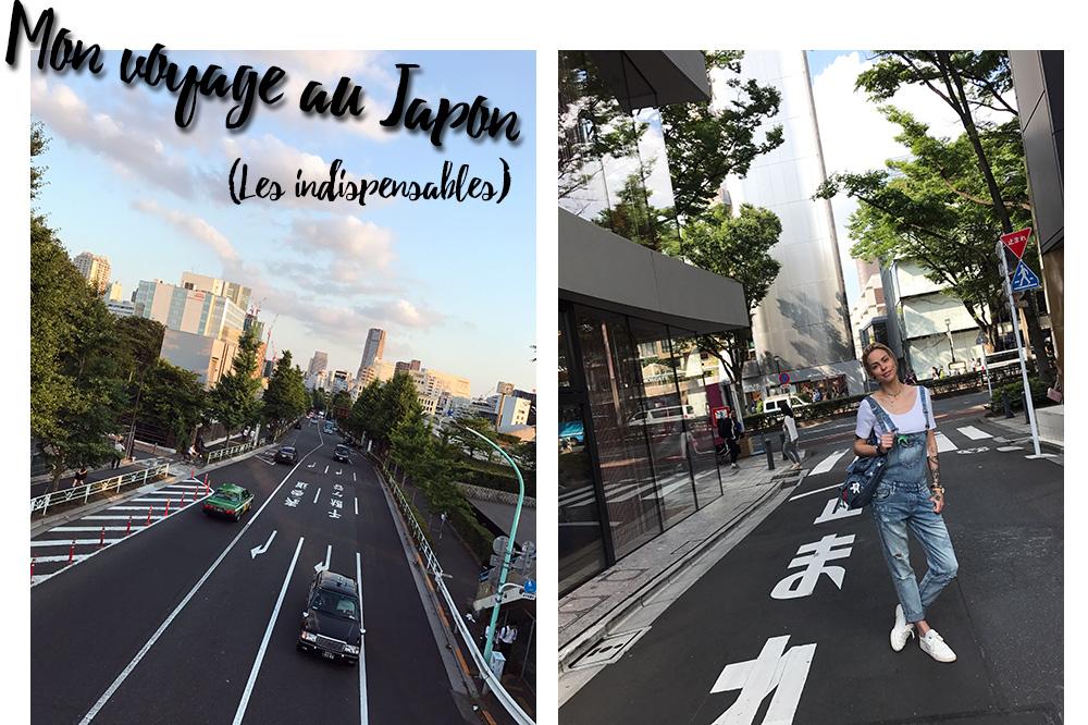 Mon voyage au Japon - Les indispensables