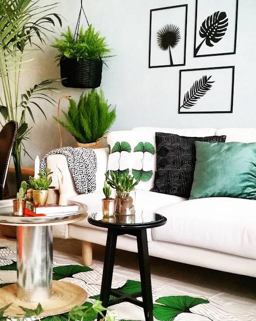 planta ideais para casa