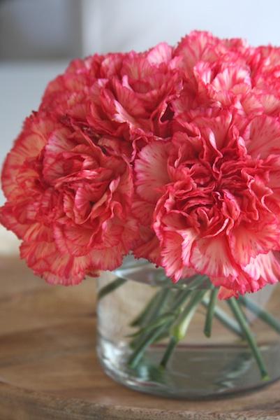 Carnation Flower Arrangement A Homemade Living
