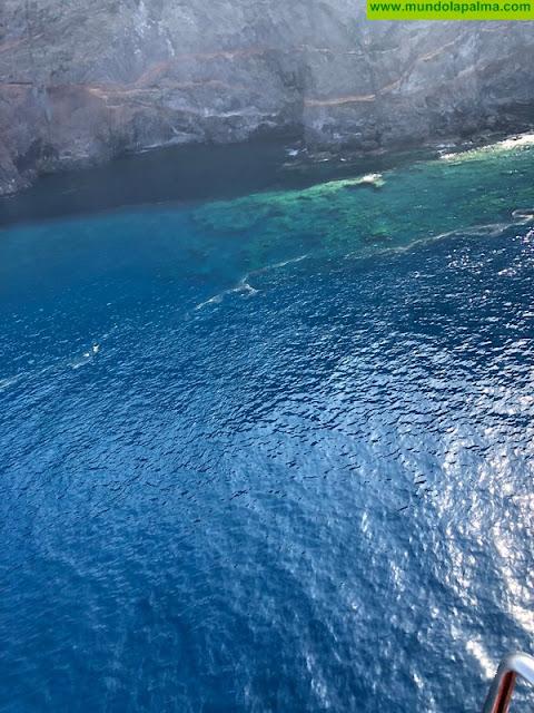 Microalgas en las costas de La Palma.
