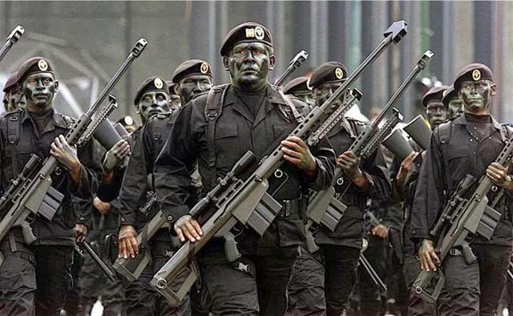 imagem atiradores de elite mexicanos com barrett m107
