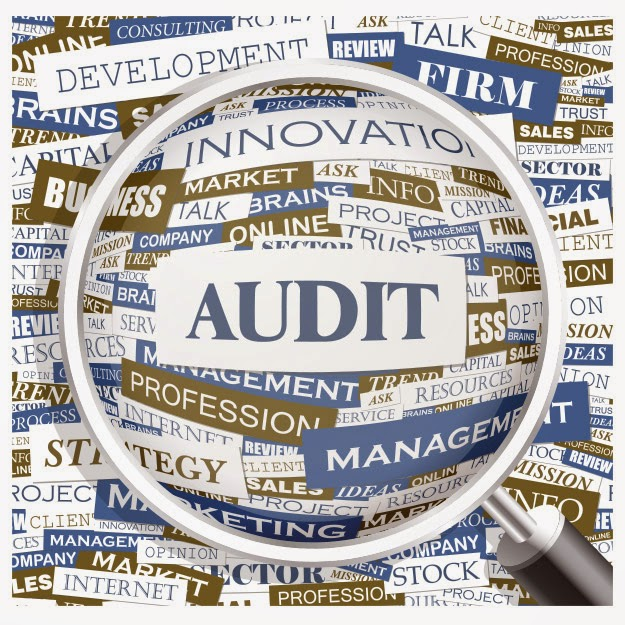 On the Quality of Vendor/Supplier Audits Responses