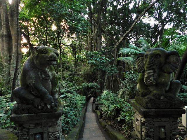 Foresta delle scimmie Bali - Monkey forest