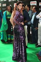 Shilpi Sharma looks Glamorous in Transparent Purple Glittering Gown at IIFA Utsavam Awards 017.JPG