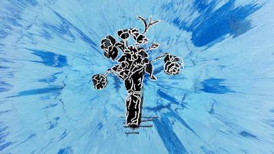 Arti Lirik Lagu Supermarket Flowers - Ed Sheeran
