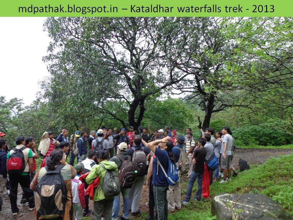 tree mark to kataldhar waterfall