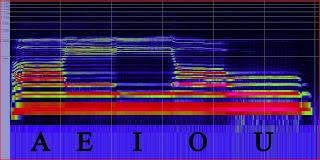 spettro armonico voce femminile, suoni vocalici, amplificare la voce live on stage