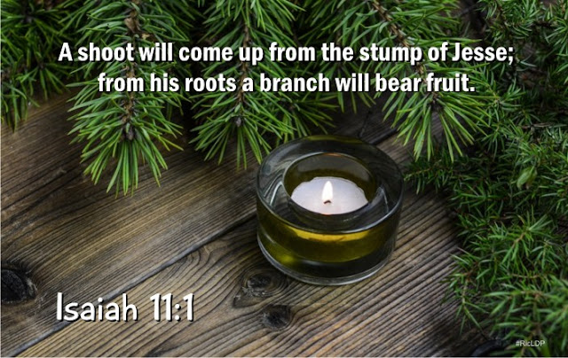 Isaiah 11:1 picture Bible verse