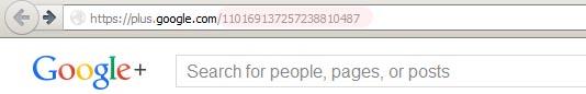 Google Plus One ID