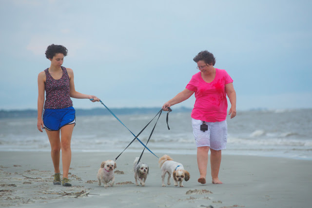 Two female friends walk three dogs along the beach