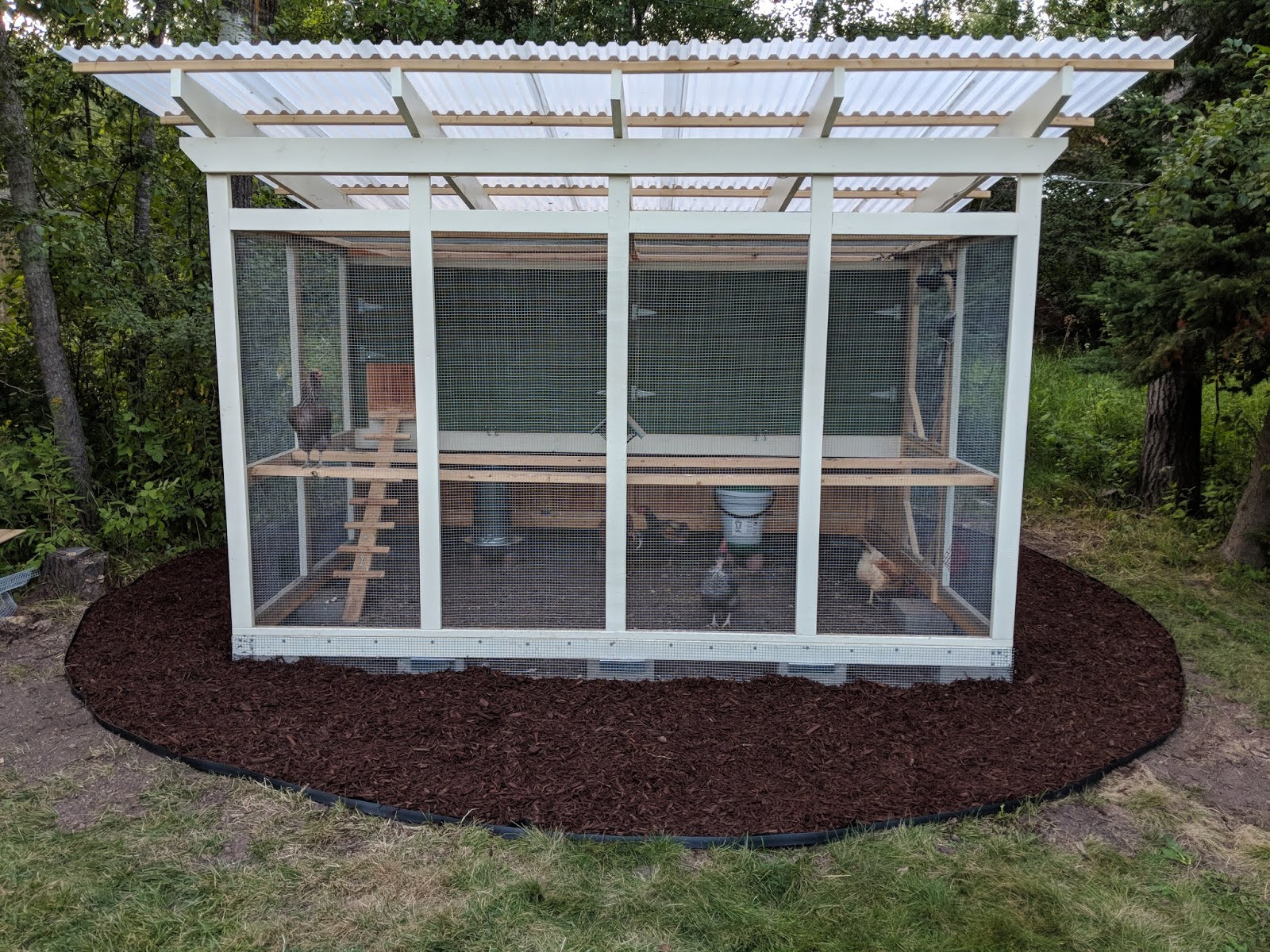Bim Chapters Off Topic My New Urban Chicken Coop