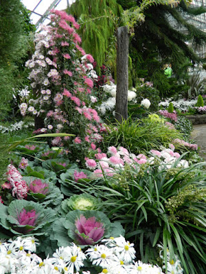 Mum standards at the Allan Gardens Conservatory 2015 Chrysanthemum Show  by garden muses-not another Toronto gardening blog