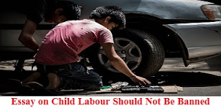 Essay on Child Labour Should Not Be Banned