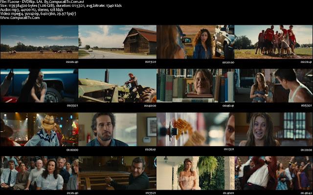 Footloose DVDRip Descargar Español Latino 1 Link 2011