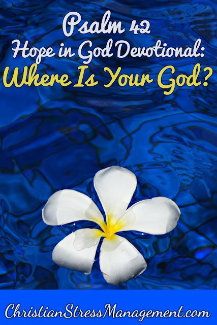 Psalm 42 Hope in God Devotional: Where Is Your God?