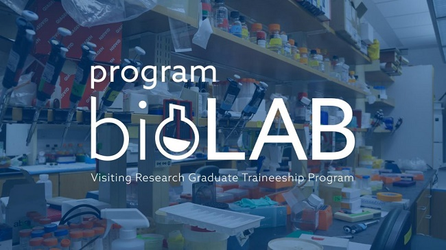 https://www.granty-na-badania.com/2018/11/biolab-staze-dla-studentow-w-usa.html