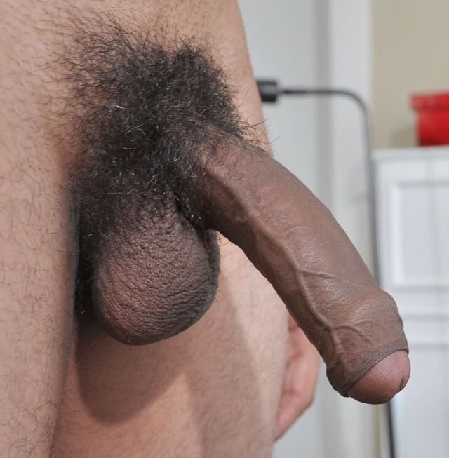 Horny guy with a hard hairy cut cock