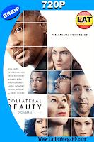 La Belleza Oculta (2016) Latino HD 720p - 2016