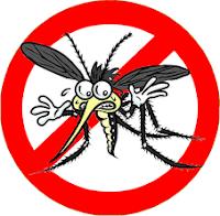 Pasti sangat menjengkelkan ketika ruangan rumah anda banyak nyamuk Cara Membuat Lotion & Semprot Alami Pengusir Nyamuk