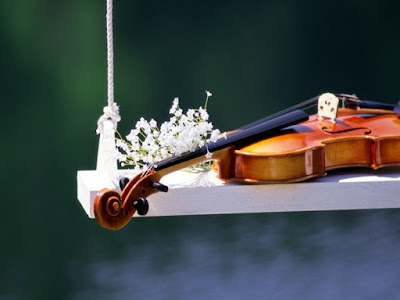 Mua đàn violin ở đâu