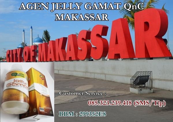 Agen Jelly Gamat QnC Makassar