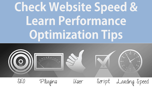 Check Website Speed & Performance Optimization