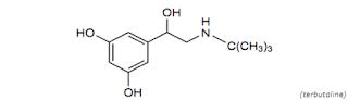Terbutaline merupakan obat golongan bronkodilator yang sanggup dipakai untuk meringankan g Terbutalin