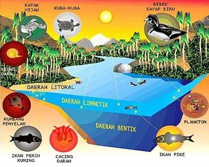 Macam-Macam Ekosistem Perairan (Akuatik)