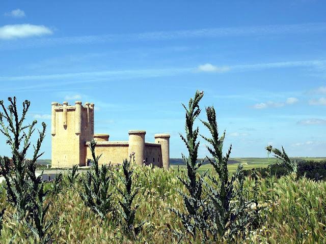 Torrelobatón (Valladolid).