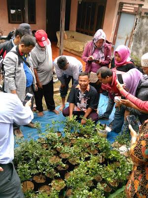 Kader Eco Village Pelatihan Budidaya Tanaman dan Buah Kawista