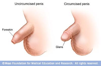 Uncircumcised Penis Masturbation 77