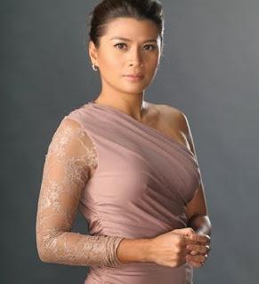 Profil Mylene Dizon Pemeran Laura Hipolito-Suarez dalam Double Kara