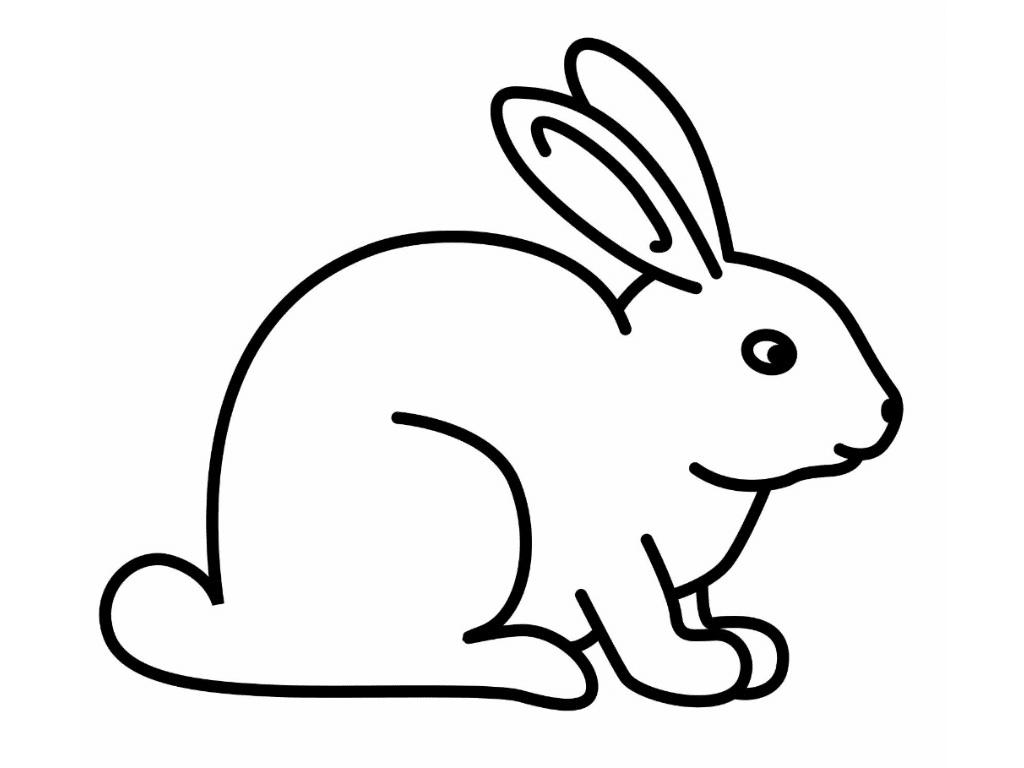 Gambar Mewarnai Kelinci Untuk Anak PAUD Dan TK