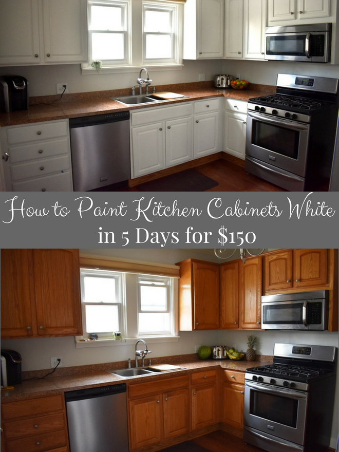 How to Paint Kitchen Cabinets White in 5 Days for $150