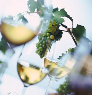 El vino blanco gana adeptos en China 1