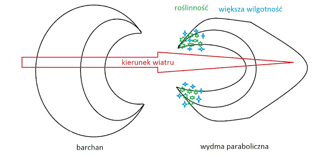 Barchan i wydma paraboliczna