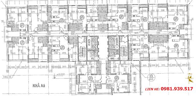 Mặt bằng tòa A6 An Bình City (bấm vào ảnh sẽ rõ hơn)