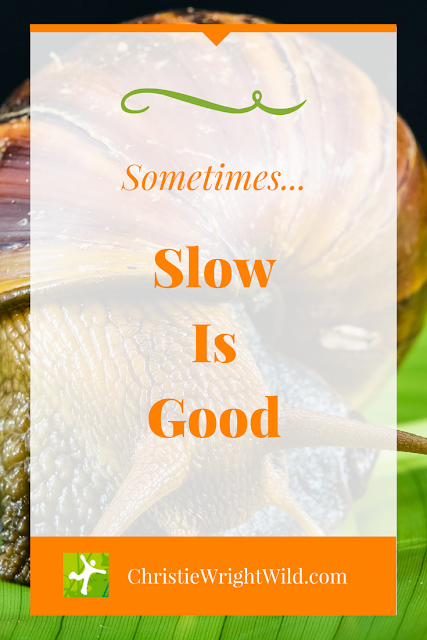 why is writing so slow? || slow is good | snails are slow | snail mail | how to write faster