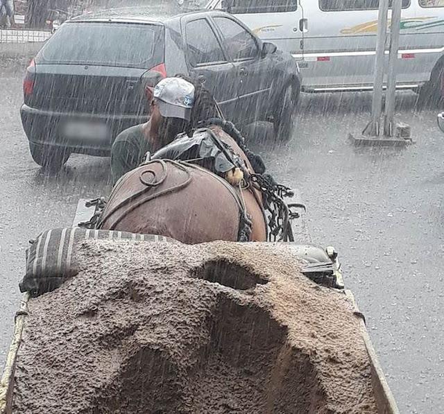 Sr. José Alcides abraçando seu cavalo Pé de Pano na chuva