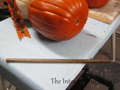 Using a wooden garden stake to secure pumpkins in place.