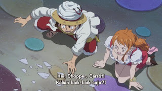 One Piece Episode 797 Sub indo