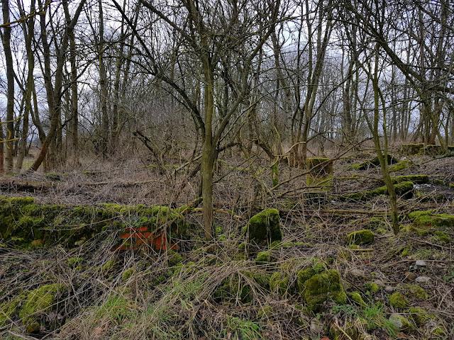 opuszczona wieś Skorzęcin - ruiny domów