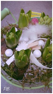 jacinthes-decoraiion-plume-paillettes