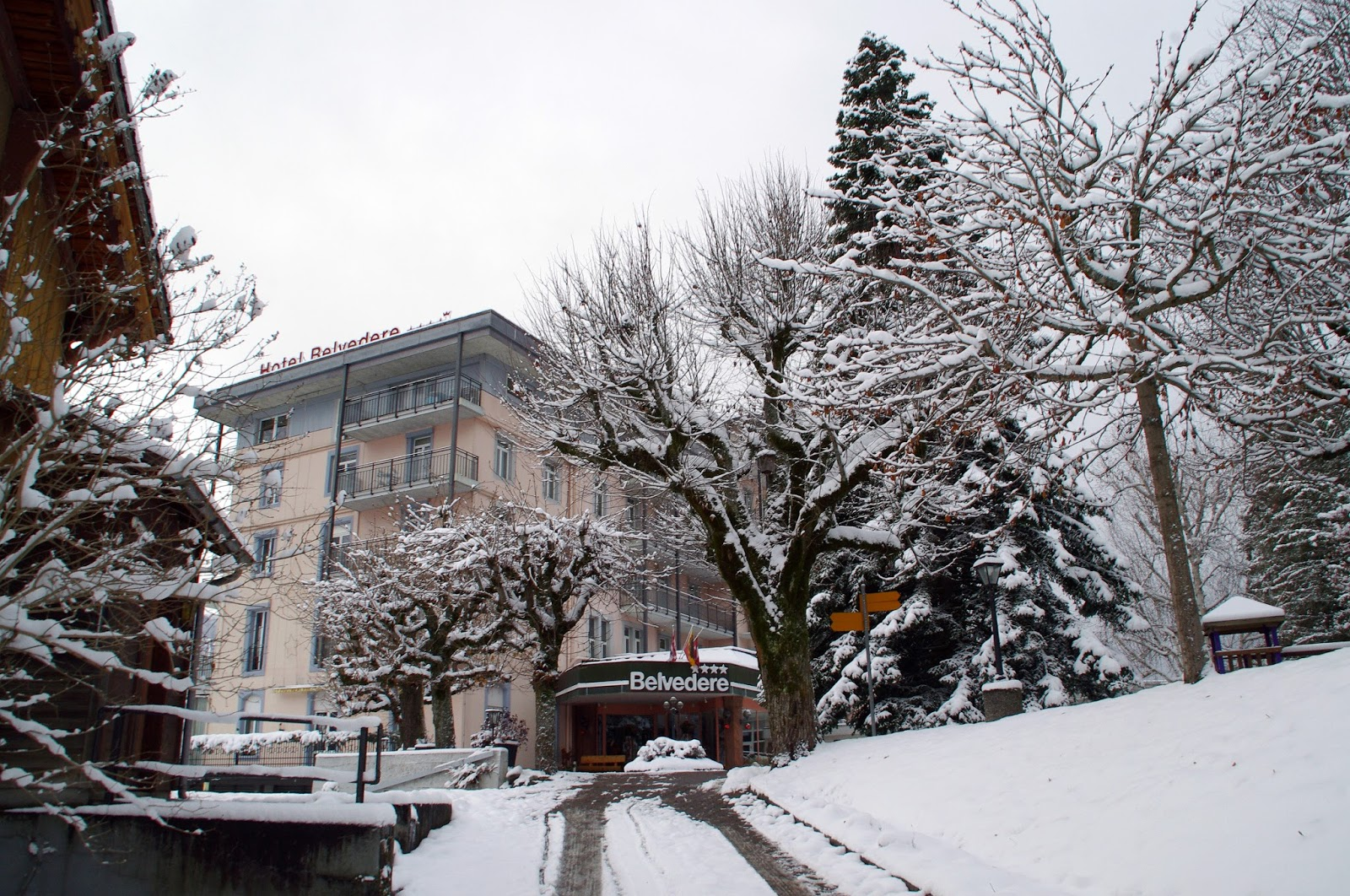 Hotel Belvedere Switzerland Winter