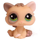 Littlest Pet Shop Globes Kitten (#1074) Pet