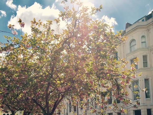 Springtime | London