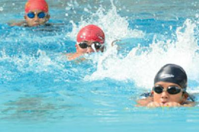 Học bơi chó an toàn cho trẻ nhỏ