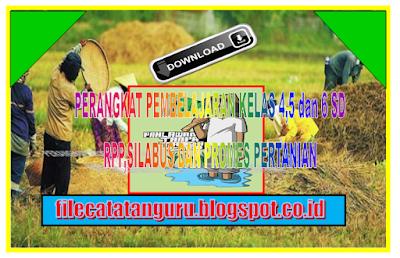 Perangkat pembelajaran Pertanian kelas 4,5 dan 6 SD/MI