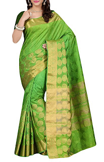 Green Net Bordered Saree